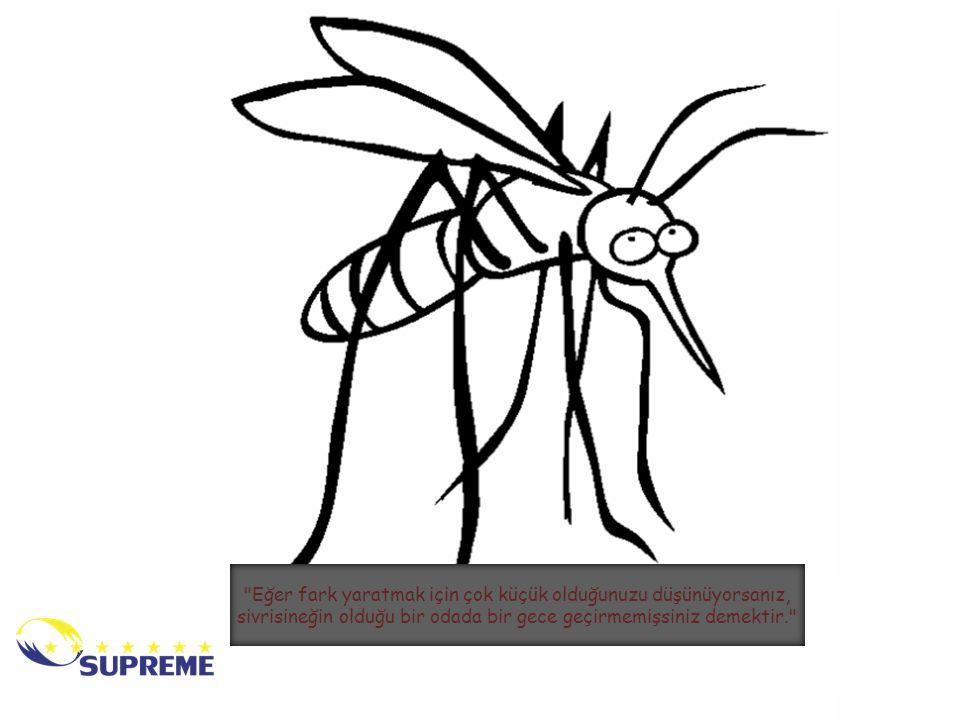 Eğer fark yaratmak için çok küçük olduğunuzu düşünüyorsanız, sivrisineğin olduğu bir odada bir gece geçirmemişsiniz demektir.