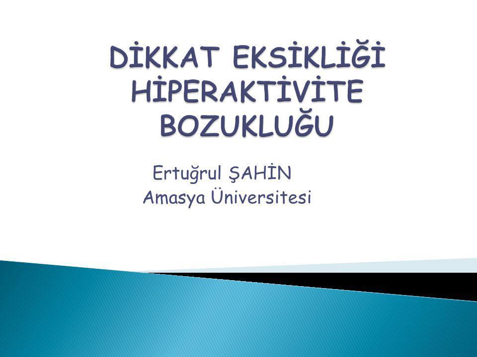 Ertuğrul ŞAHİN Amasya Üniversitesi