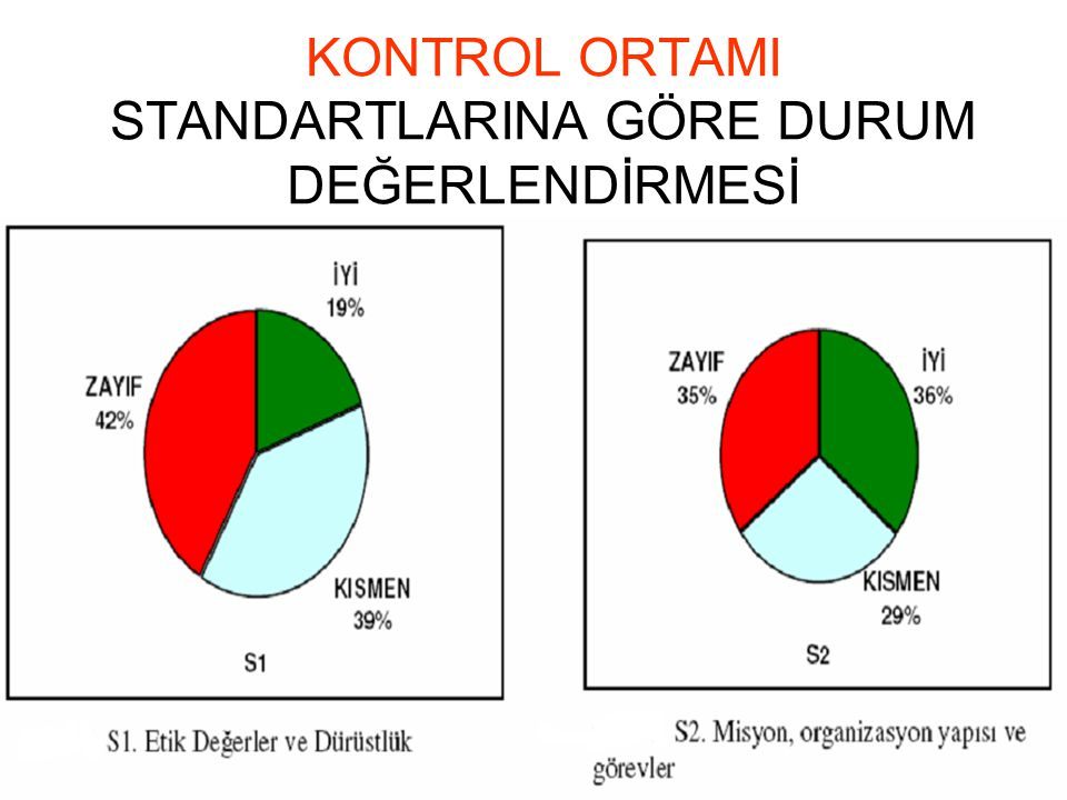 KONTROL ORTAMI STANDARTLARINA GÖRE DURUM DEĞERLENDİRMESİ