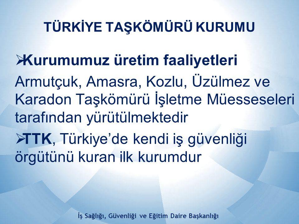 FERDİ KURTARICI SAYISI (2013 YILI) İş Sağlığı, Güvenliği ve Eğitim Daire Başkanlığı MÜESSESE OFKFFK MASKE TOP.