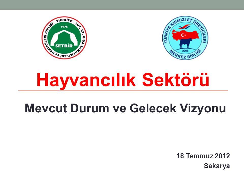 Mevcut Durum ve Gelecek Vizyonu 18 Temmuz 2012 Sakarya Hayvancılık Sektörü