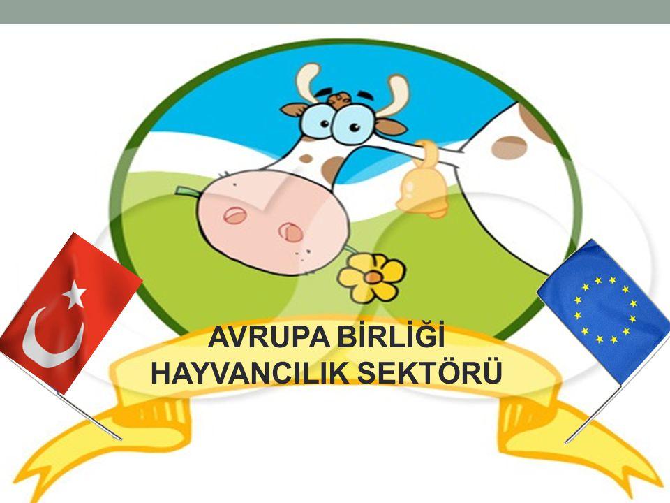 2011 yılında, Türkiye Avrupa Birliği'nden 166.737 ton canlı hayvan ve kırmızı et ithal ediyor Ülkemiz tüketiminin yaklaşık olarak, sadece %14'ü