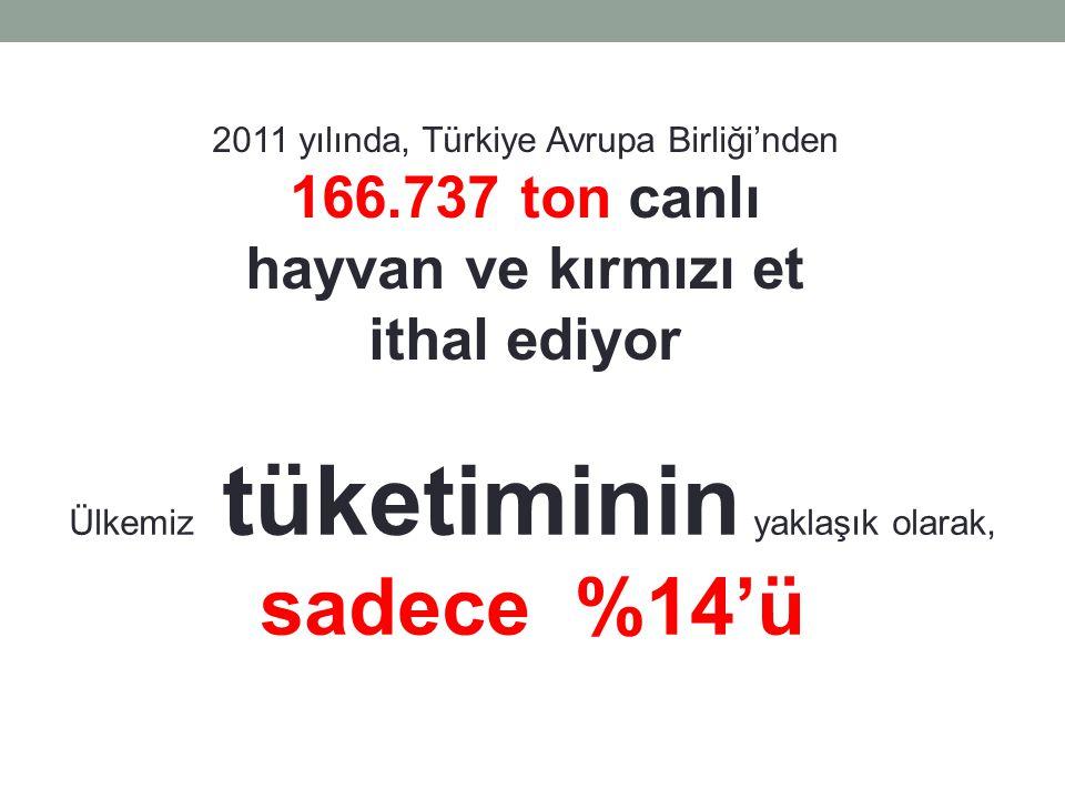 2011 yılı sonu ithalat payı Avrupa Birliği Türkiye % 26,2 Rusya % 21,8