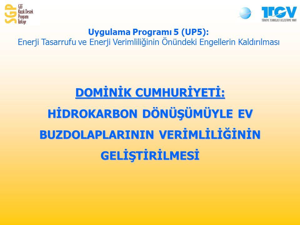 DOMİNİK CUMHURİYETİ: HİDROKARBON DÖNÜŞÜMÜYLE EV BUZDOLAPLARININ VERİMLİLİĞİNİN GELİŞTİRİLMESİ Uygulama Programı 5 (UP5): Enerji Tasarrufu ve Enerji Verimliliğinin Önündeki Engellerin Kaldırılması
