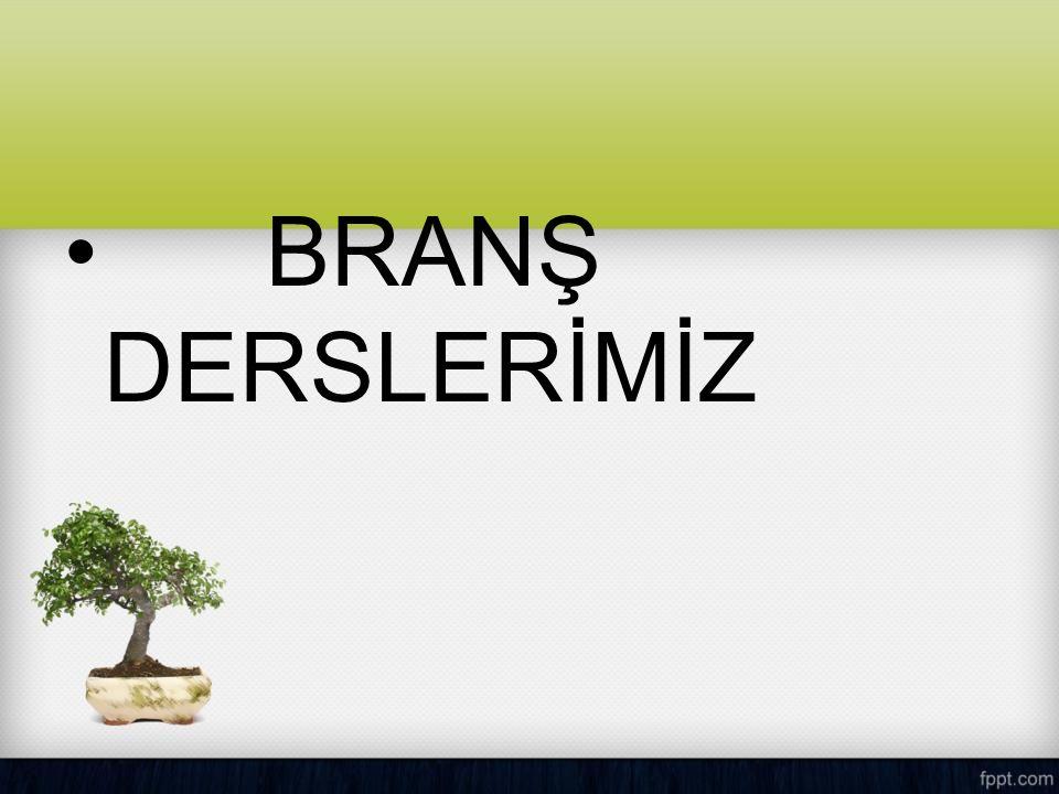 BRANŞ DERSLERİMİZ