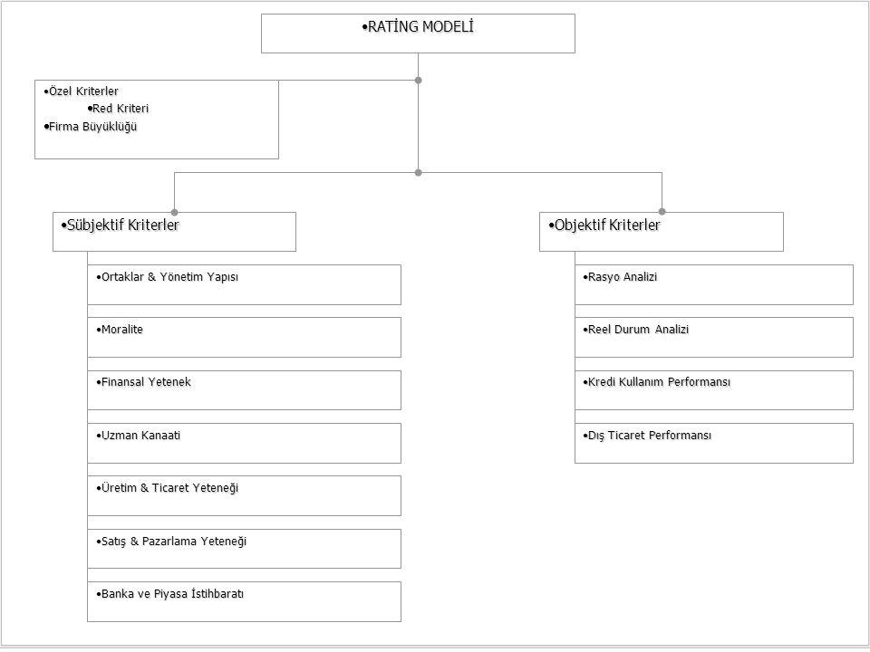 RATİNG MODELİRATİNG MODELİ Özel KriterlerÖzel Kriterler  Red Kriteri  Firma Büyüklüğü Sübjektif KriterlerSübjektif Kriterler Objektif KriterlerObjek
