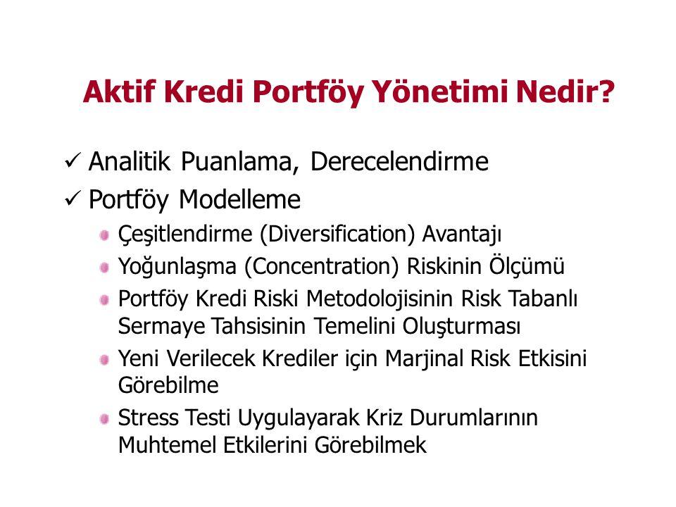 Aktif Kredi Portföy Yönetimi Nedir.