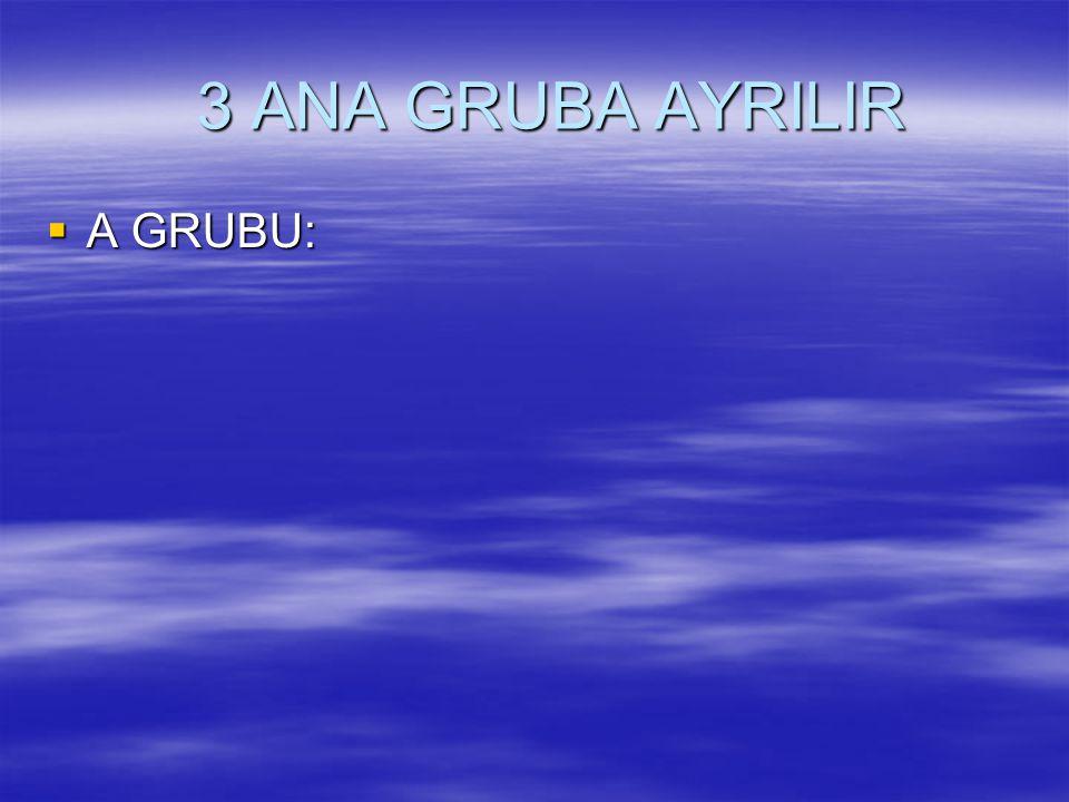 3 ANA GRUBA AYRILIR 3 ANA GRUBA AYRILIR  A GRUBU: