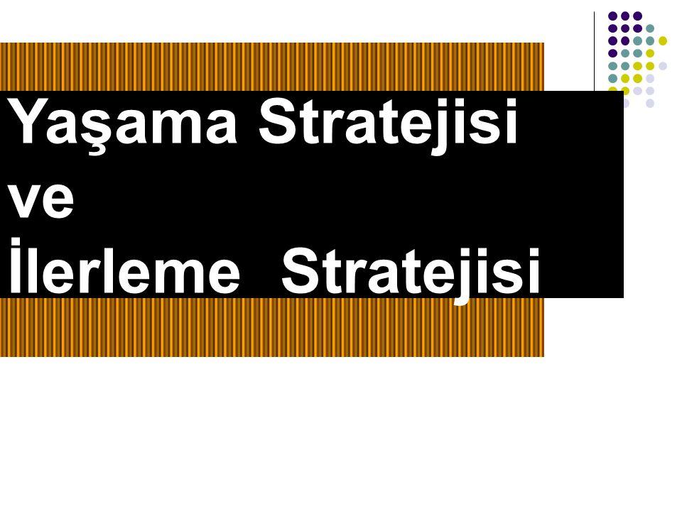 Yaşama Stratejisi ve İlerleme Stratejisi