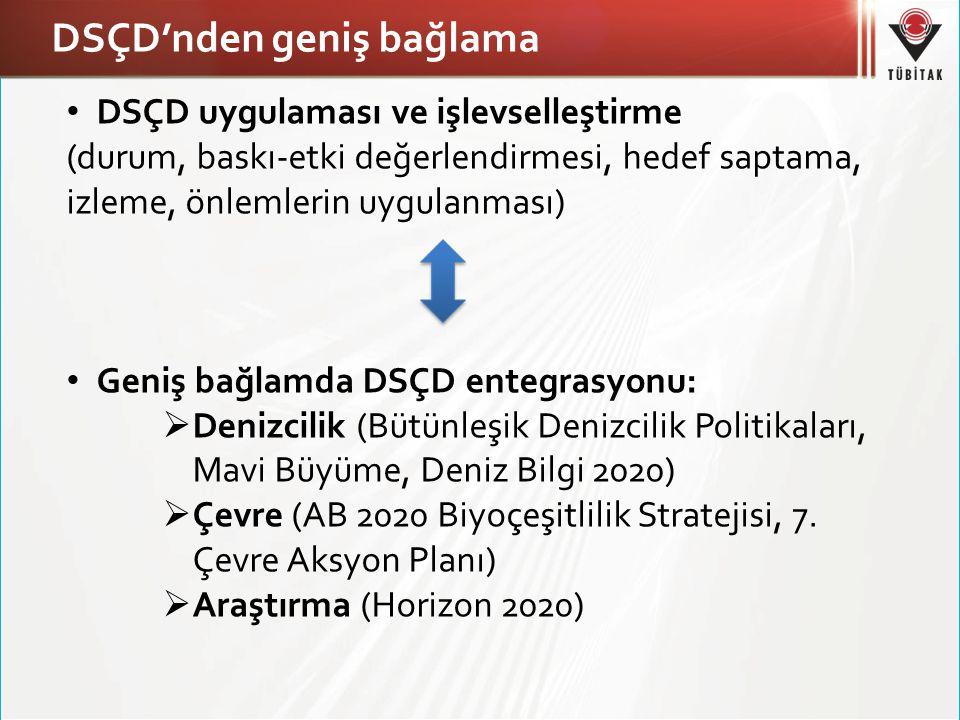 DSÇD'nden geniş bağlama DSÇD uygulaması ve işlevselleştirme (durum, baskı-etki değerlendirmesi, hedef saptama, izleme, önlemlerin uygulanması) Geniş b