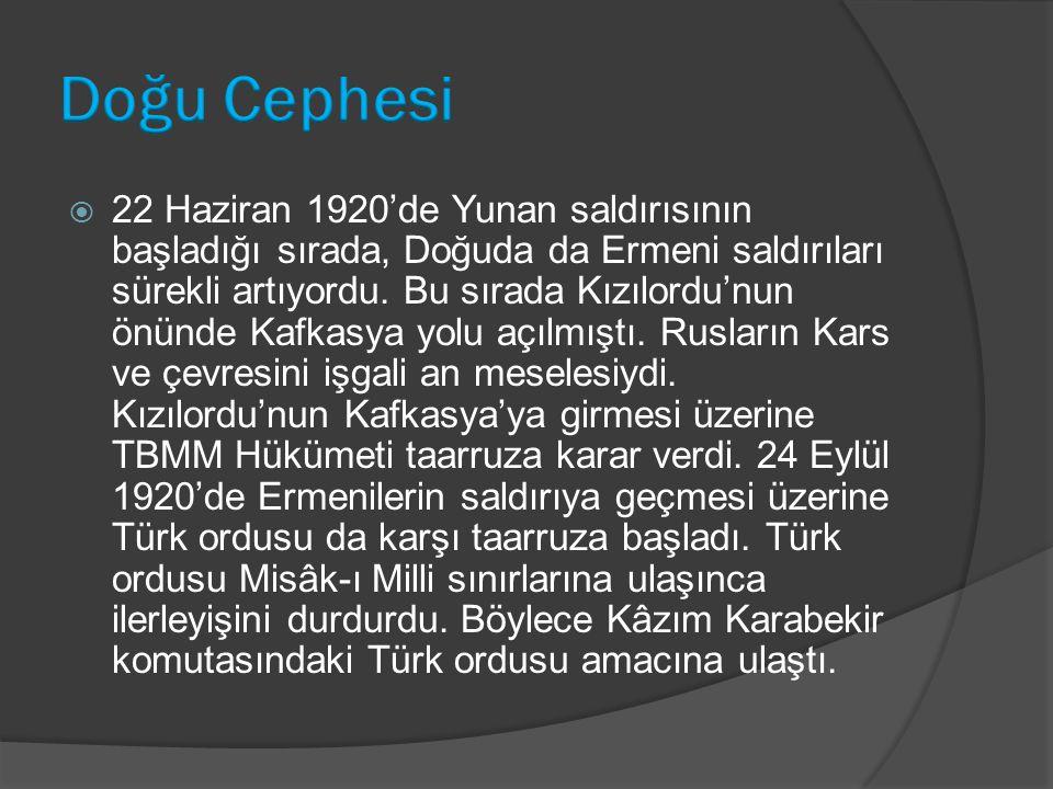  22 Haziran 1920'de Yunan saldırısının başladığı sırada, Doğuda da Ermeni saldırıları sürekli artıyordu. Bu sırada Kızılordu'nun önünde Kafkasya yolu