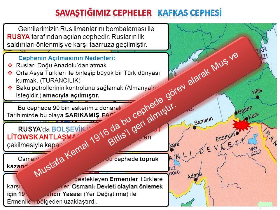 Gemilerimizin Rus limanlarını bombalaması ile RUSYA tarafından açılan cephedir. Rusların ilk saldırıları önlenmiş ve karşı taarruza geçilmiştir. Cephe
