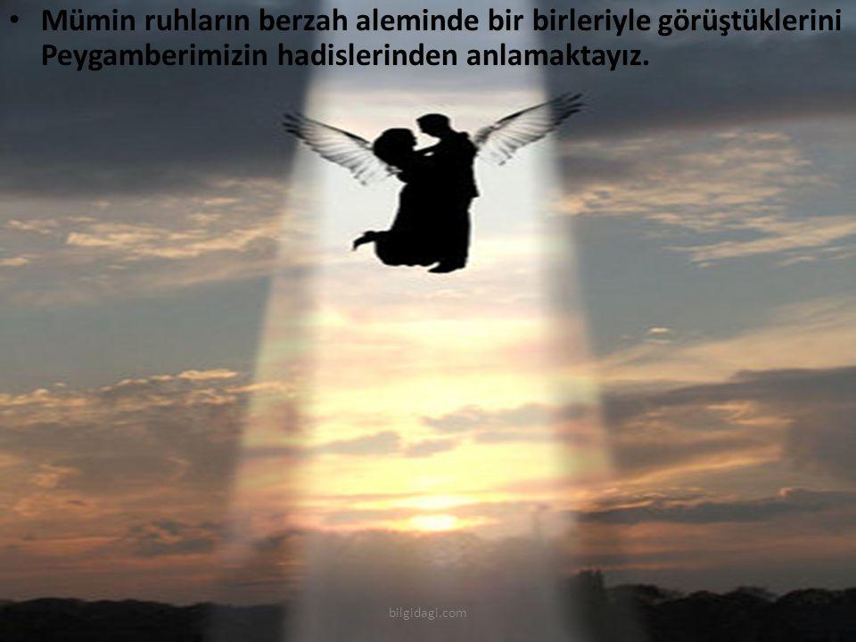 Mümin ruhların berzah aleminde bir birleriyle görüştüklerini Peygamberimizin hadislerinden anlamaktayız. bilgidagi.com