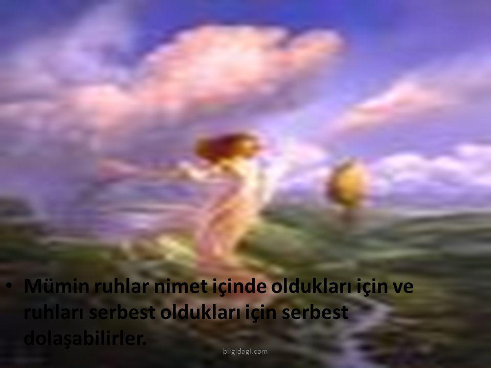 Mümin ruhlar nimet içinde oldukları için ve ruhları serbest oldukları için serbest dolaşabilirler. bilgidagi.com