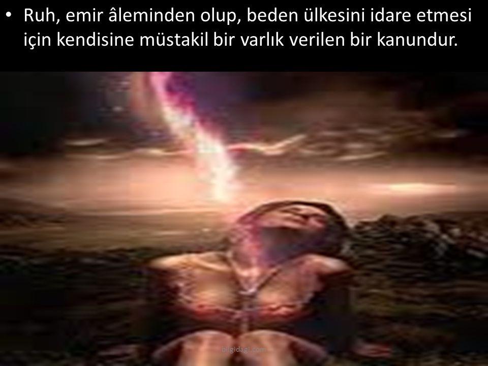 Ruh, emir âleminden olup, beden ülkesini idare etmesi için kendisine müstakil bir varlık verilen bir kanundur. bilgidagi.com