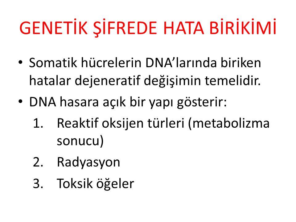 GENETİK ŞİFREDE HATA BİRİKİMİ Somatik hücrelerin DNA'larında biriken hatalar dejeneratif değişimin temelidir. DNA hasara açık bir yapı gösterir: 1.Rea