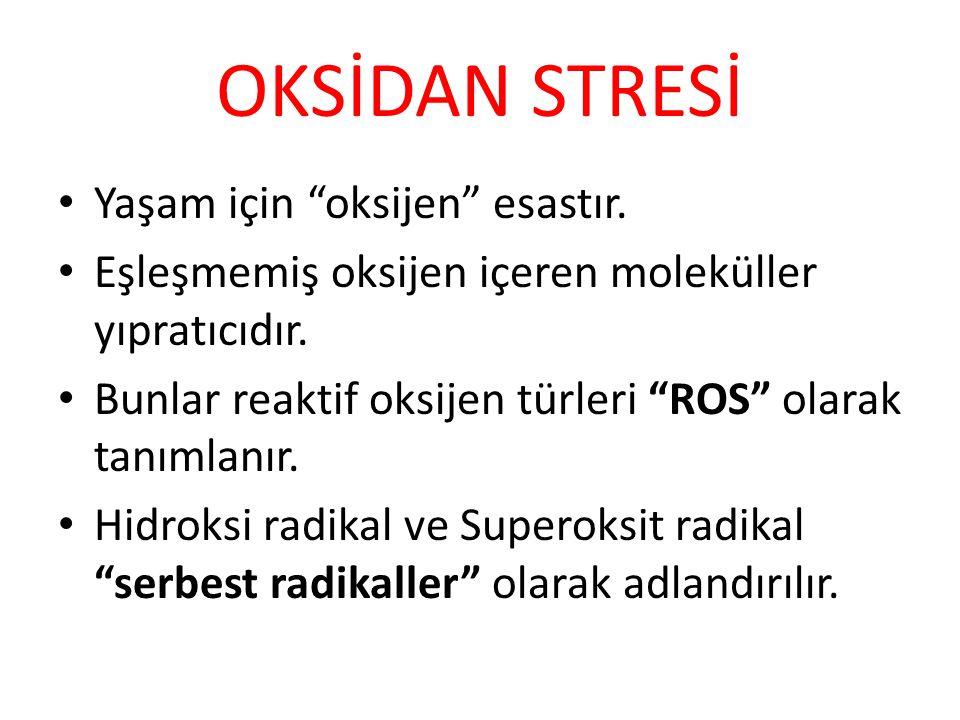 """OKSİDAN STRESİ Yaşam için """"oksijen"""" esastır. Eşleşmemiş oksijen içeren moleküller yıpratıcıdır. Bunlar reaktif oksijen türleri """"ROS"""" olarak tanımlanır"""