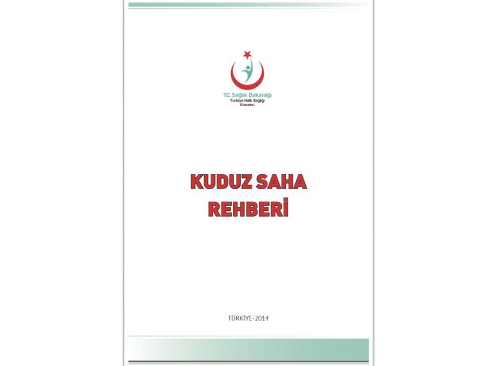 KÖPEK VE SIĞIR POZİTİF ÖRNEKLER (01.01.2013-31.12.2013)