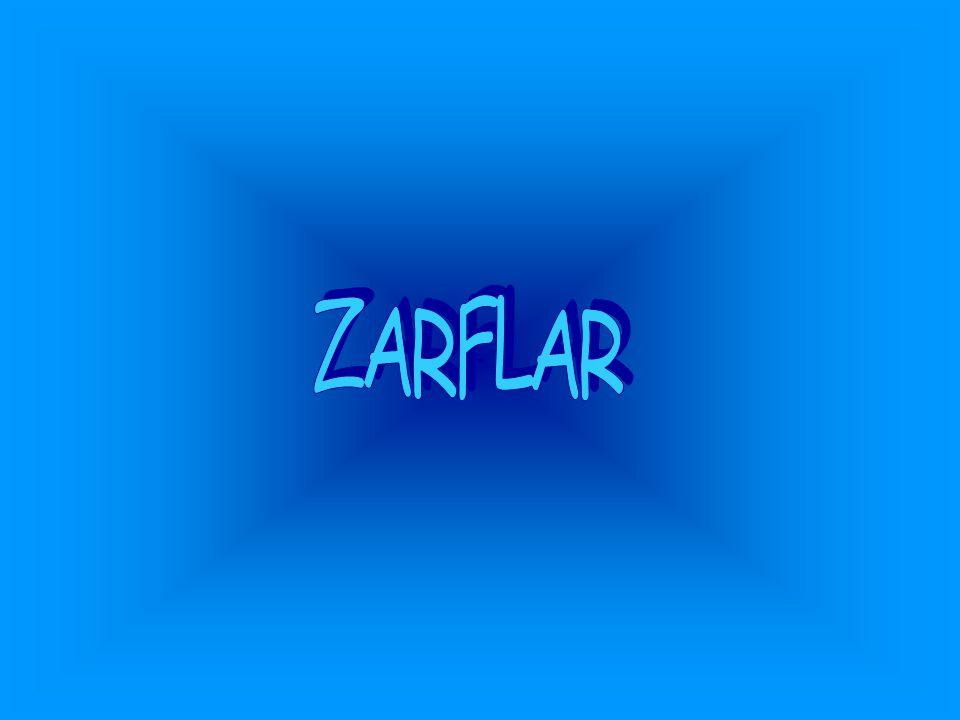 Zarf(belirteç) Fiillerin,sıfatların yada başka bir zarfın anlamını,zaman,durum,azlık çokluk,yer yön ve soru kavramlarıyla belirle- yip,sınırlayan sözcüklere zarf(belirteç) denir.