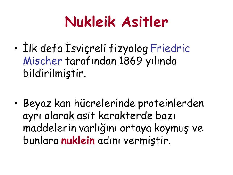 Nukleik Asitler İlk defa İsviçreli fizyolog Friedric Mischer tarafından 1869 yılında bildirilmiştir. Beyaz kan hücrelerinde proteinlerden ayrı olarak