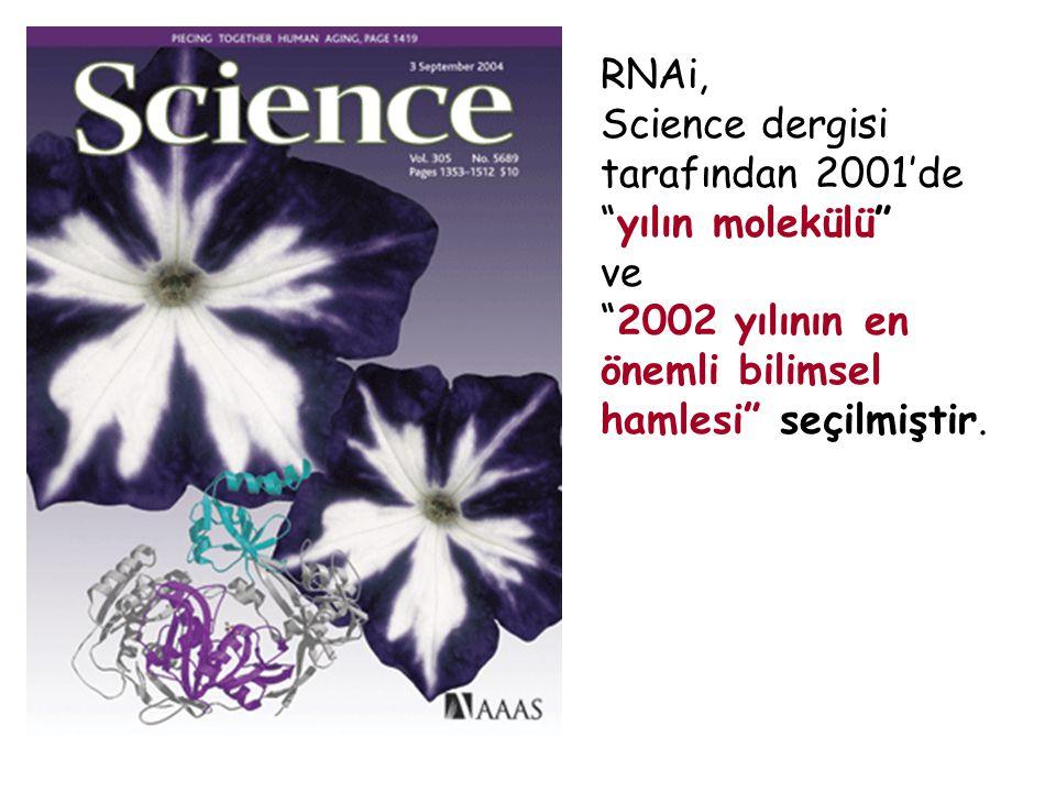 """RNAi, Science dergisi tarafından 2001'de """"yılın molekülü"""" ve """"2002 yılının en önemli bilimsel hamlesi"""" seçilmiştir."""