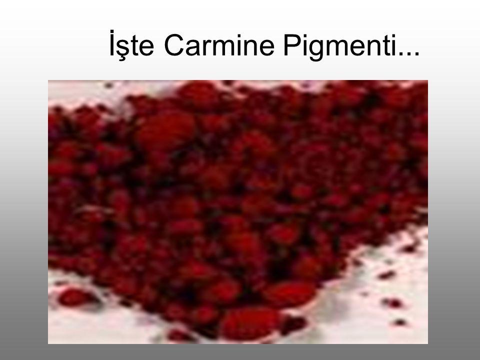 İşte Carmine Pigmenti...