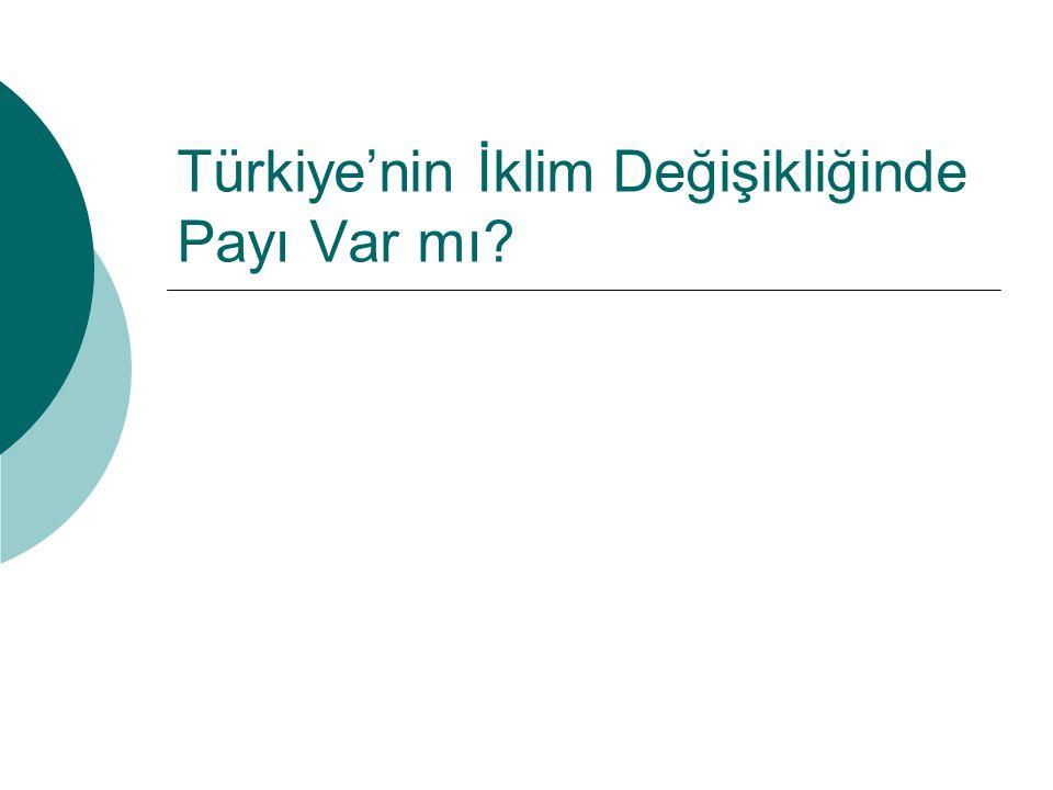 Türkiye'nin İklim Değişikliğinde Payı Var mı?