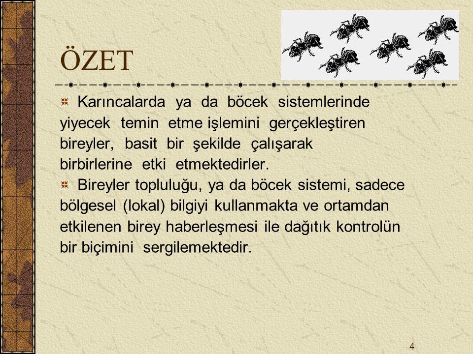 25 SONUÇ Karınca Kolonisi Optimizasyonu, gerçek karınca kolonilerinin yiyecek temin etmeleri sırasında, karıncalar arasında kendiliğinden ortaya çıkan etkileşimli haberleşmeden esinlenilerek geliştirilmiştir.