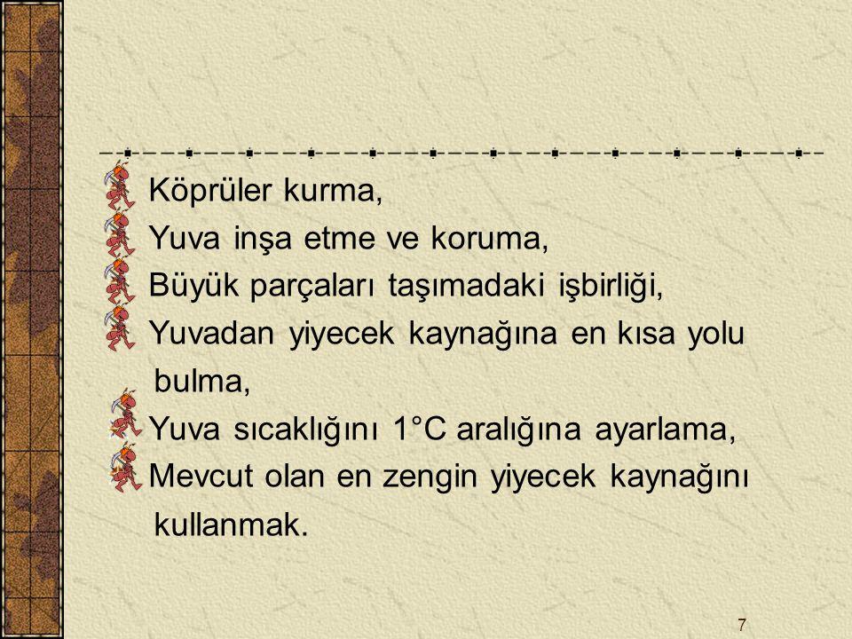 18 İterasyon 4 A E D C B 4 [D,E,A,B] 2 [B,C,D,A] 5 [E,A,B,C] 1 [A,DCE] 3 [C,B,E,D]