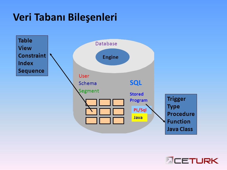 Veri Tabanı Bileşenleri Table View Constraint Index Sequence Trigger Type Procedure Function Java Class User Schema Segment Engine SQL Stored Program