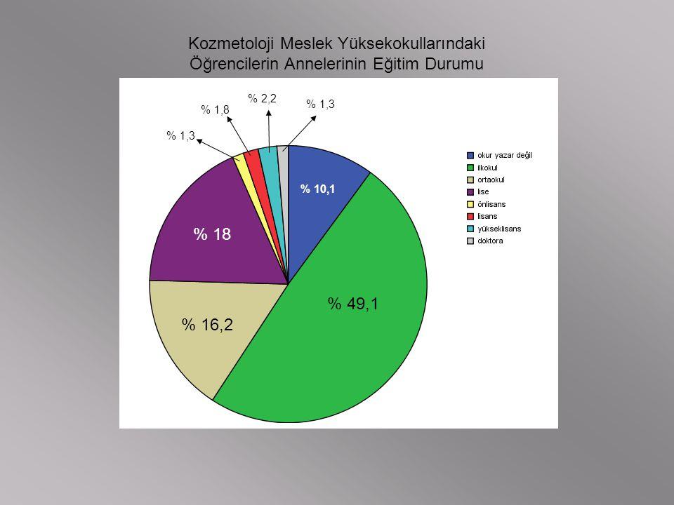 Kozmetoloji Meslek Yüksekokullarındaki Öğrencilerin Annelerinin Eğitim Durumu % 10,1 % 49,1 % 16,2 % 18 % 1,3 % 1,8 % 2,2 % 1,3