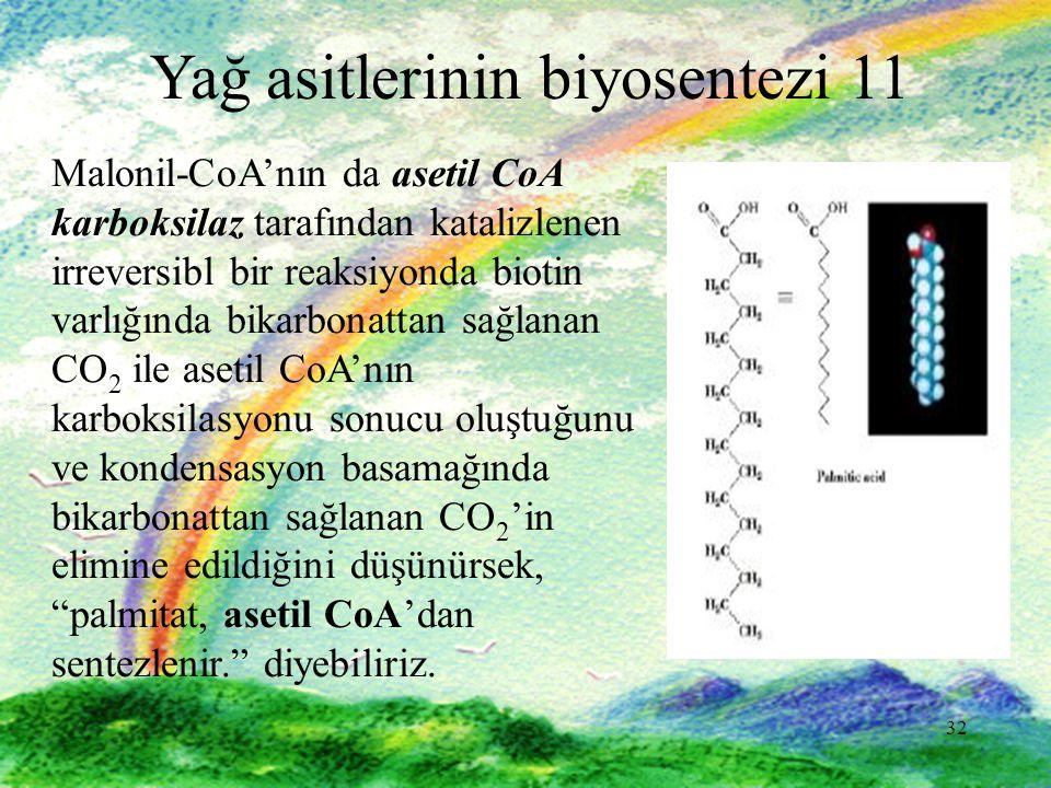 32 Yağ asitlerinin biyosentezi 11 Malonil-CoA'nın da asetil CoA karboksilaz tarafından katalizlenen irreversibl bir reaksiyonda biotin varlığında bika
