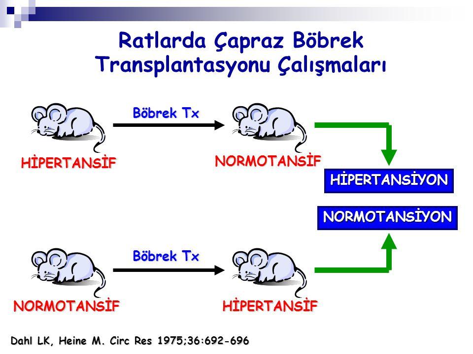 Ratlarda Çapraz Böbrek Transplantasyonu Çalışmaları HİPERTANSİF NORMOTANSİF Böbrek Tx NORMOTANSİFHİPERTANSİF HİPERTANSİYON NORMOTANSİYON Dahl LK, Hein