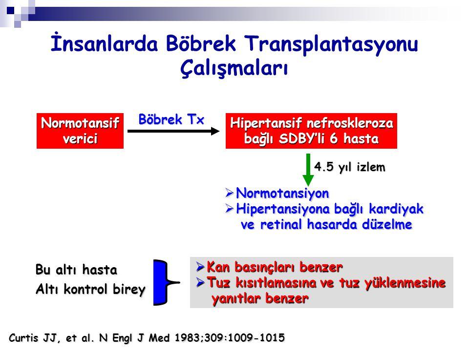 İnsanlarda Böbrek Transplantasyonu Çalışmaları Hipertansif nefroskleroza bağlı SDBY'li 6 hasta Normotansifverici Böbrek Tx  Normotansiyon  Hipertans