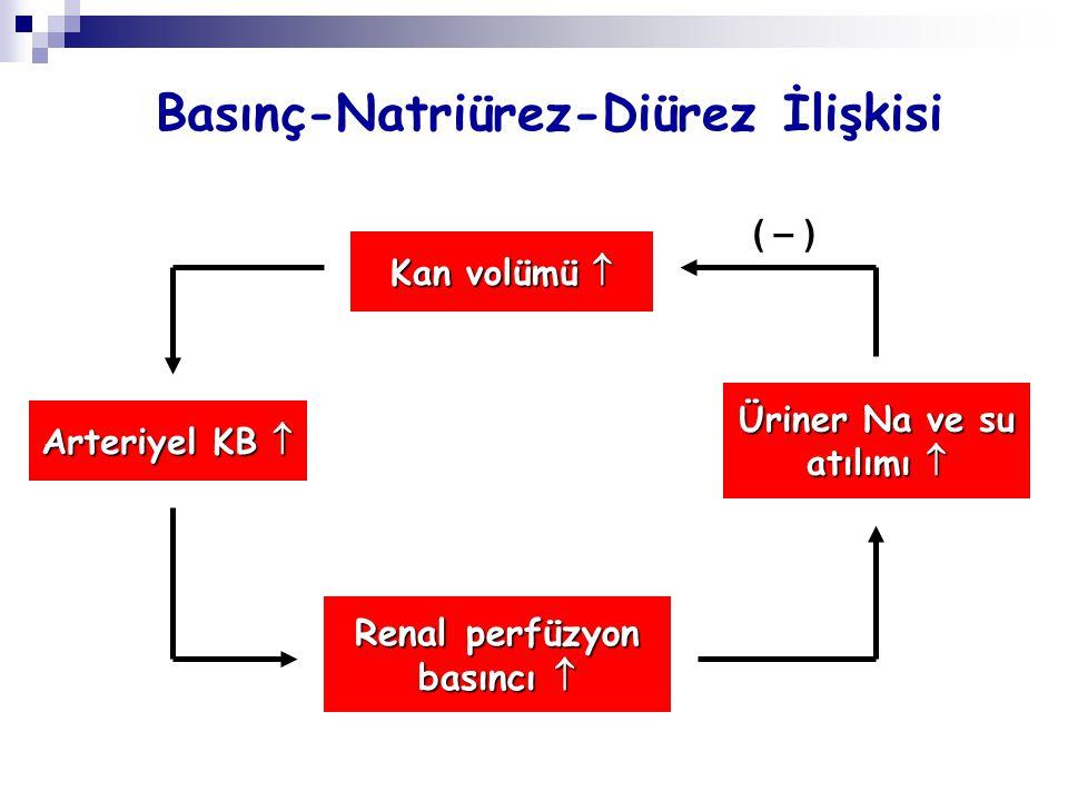 Basınç-Natriürez-Diürez İlişkisi Kan volümü  Arteriyel KB  Renal perfüzyon basıncı  Üriner Na ve su atılımı  ( – )