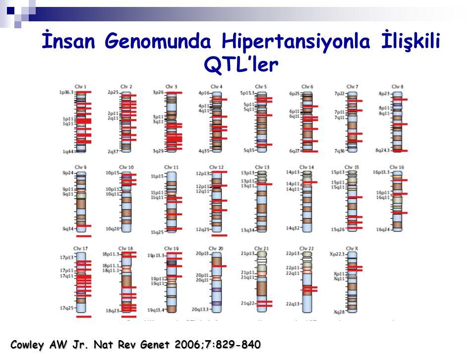 Cowley AW Jr. Nat Rev Genet 2006;7:829-840 İnsan Genomunda Hipertansiyonla İlişkili QTL'ler