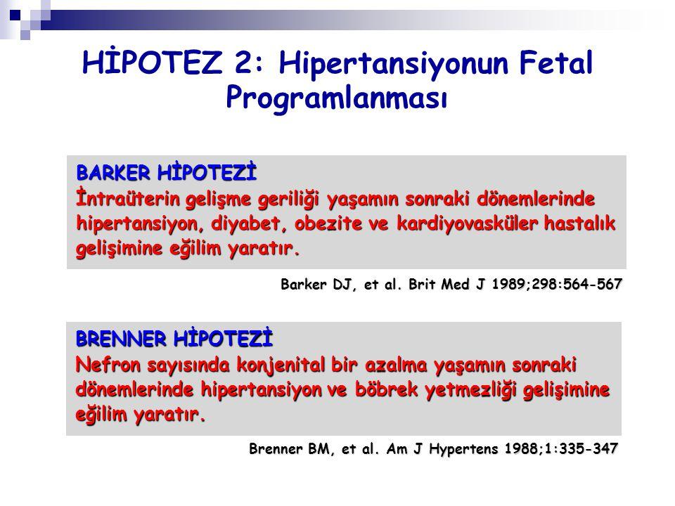 HİPOTEZ 2: Hipertansiyonun Fetal Programlanması BARKER HİPOTEZİ İntraüterin gelişme geriliği yaşamın sonraki dönemlerinde hipertansiyon, diyabet, obez