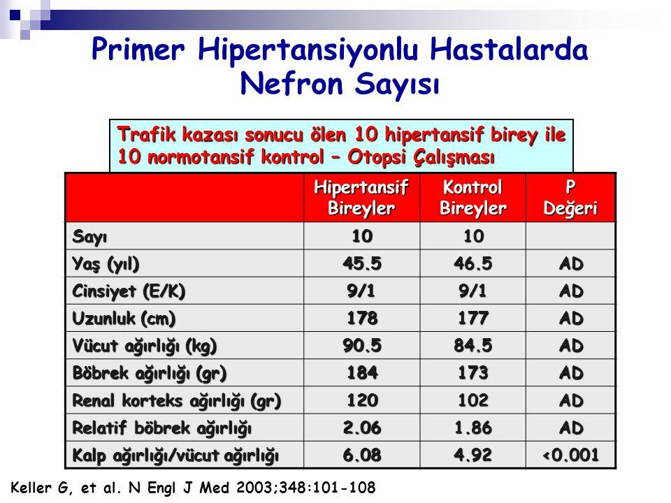 Primer Hipertansiyonlu Hastalarda Nefron Sayısı Hipertansif Bireyler Kontrol Bireyler P Değeri Sayı1010 Yaş (yıl) 45.546.5AD Cinsiyet (E/K) 9/19/1AD U