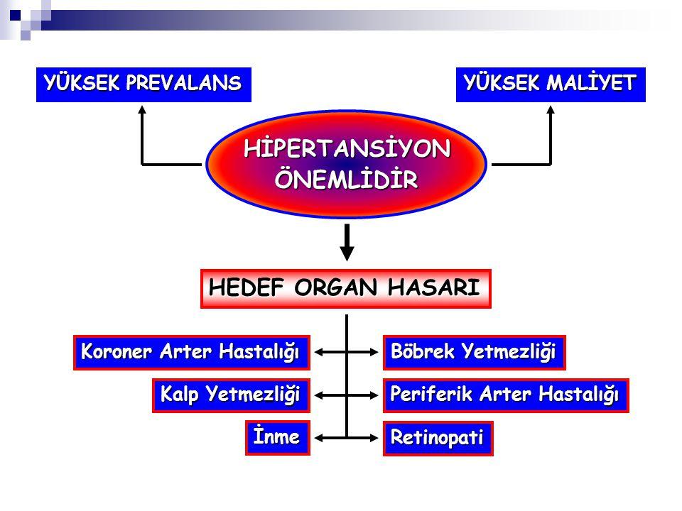 Nefron Heterojenitesi Az sayıda iskemik ve hipofiltre nefron popülasyonu Çok sayıda normal nefron popülasyonu Na atılımı bozuk Baskılanamayan renin sekresyonu Hiperfiltrasyon Afferent vazokonstriksiyon Proksimal Na reabsorpsiyonu Na retansiyonu
