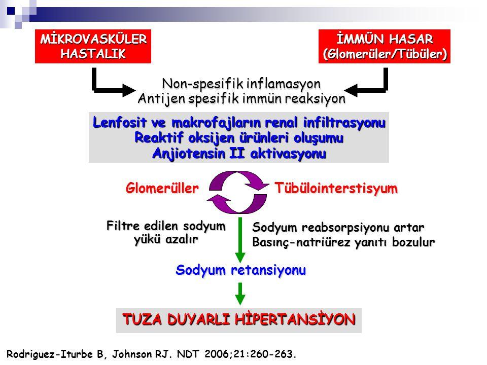 MİKROVASKÜLERHASTALIK İMMÜN HASAR (Glomerüler/Tübüler) Non-spesifik inflamasyon Antijen spesifik immün reaksiyon Lenfosit ve makrofajların renal infil
