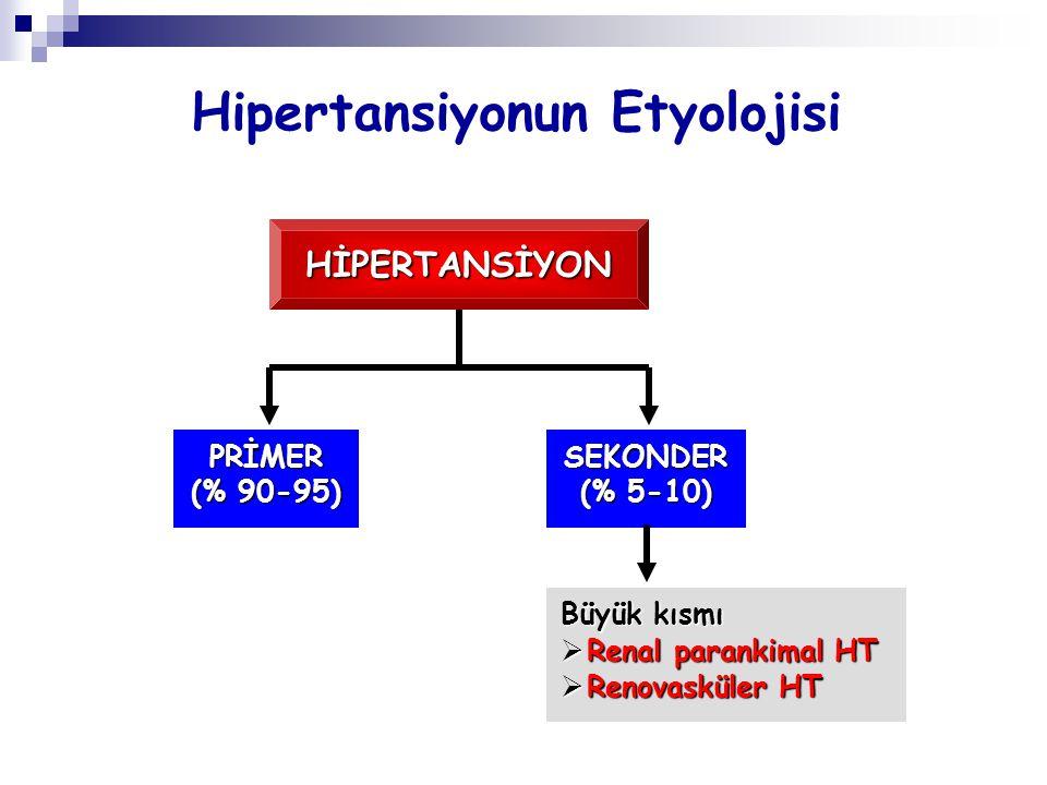 Hipertansiyon Gelişimini Nefron Sayısı mı, Arterioloskleroz mu Belirler.