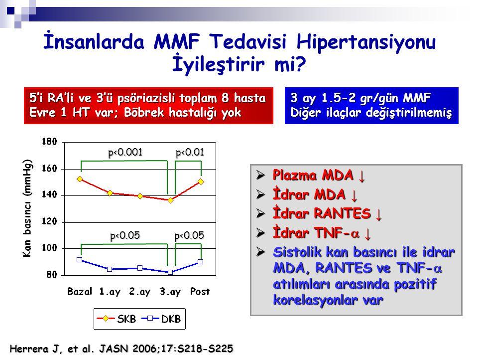 İnsanlarda MMF Tedavisi Hipertansiyonu İyileştirir mi?  Plazma MDA ↓  İdrar MDA ↓  İdrar RANTES ↓  İdrar TNF-  ↓  Sistolik kan basıncı ile idrar