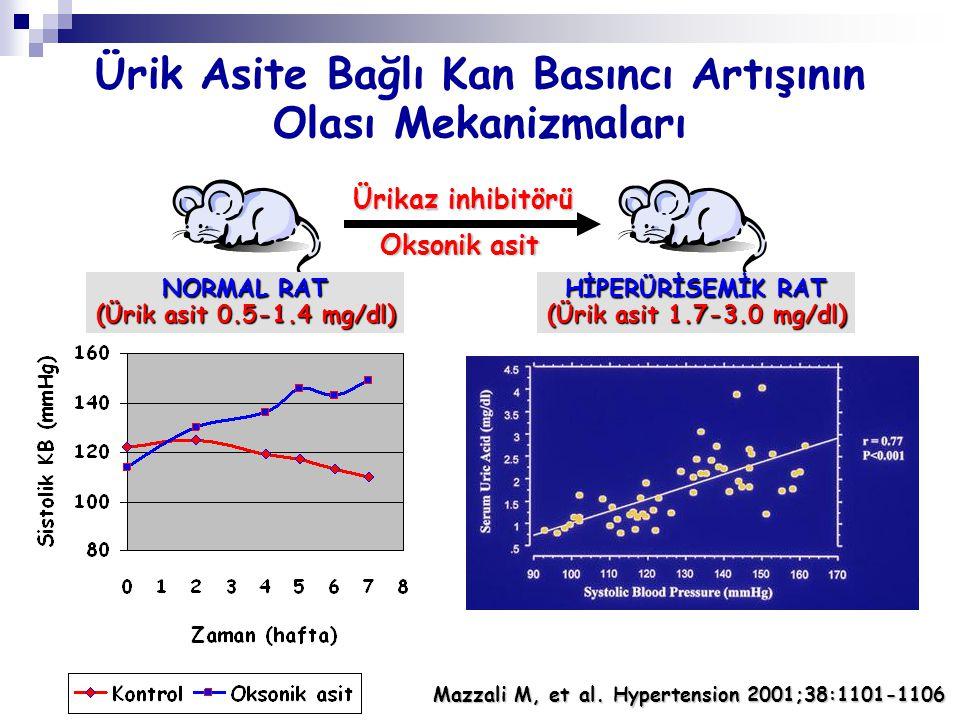 Ürikaz inhibitörü Oksonik asit NORMAL RAT (Ürik asit 0.5-1.4 mg/dl) HİPERÜRİSEMİK RAT (Ürik asit 1.7-3.0 mg/dl) Ürik Asite Bağlı Kan Basıncı Artışının