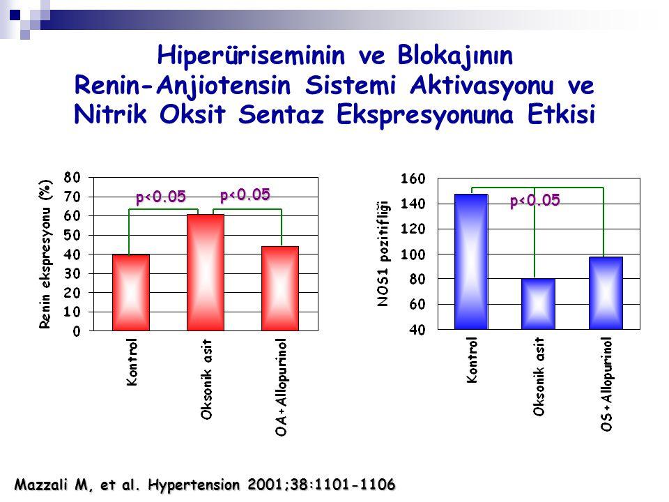 Mazzali M, et al. Hypertension 2001;38:1101-1106 Hiperüriseminin ve Blokajının Renin-Anjiotensin Sistemi Aktivasyonu ve Nitrik Oksit Sentaz Ekspresyon