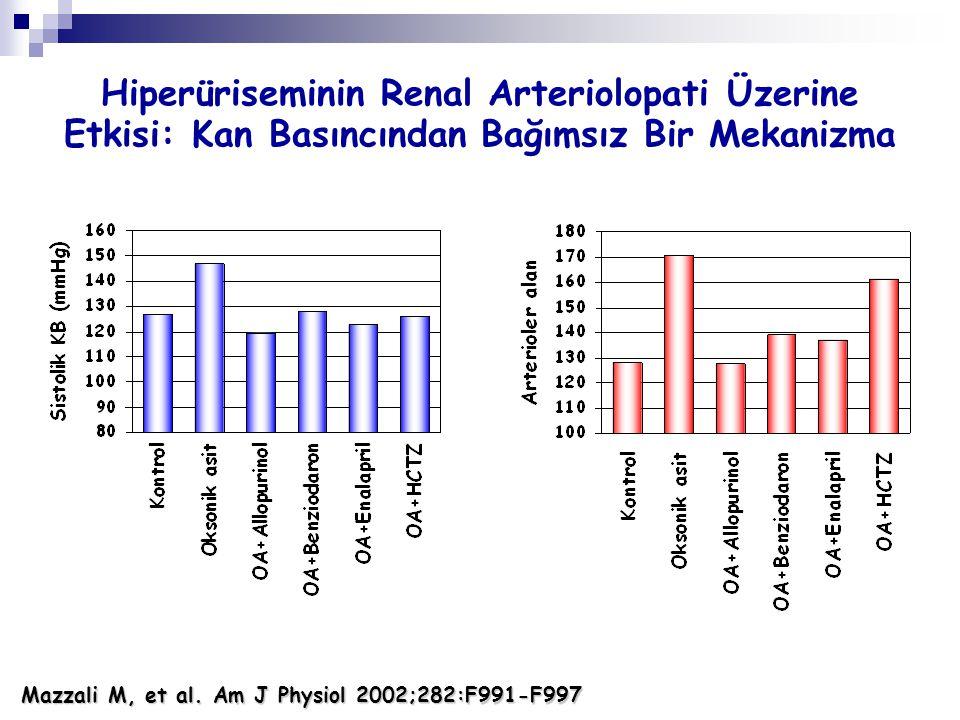 Hiperüriseminin Renal Arteriolopati Üzerine Etkisi: Kan Basıncından Bağımsız Bir Mekanizma Mazzali M, et al. Am J Physiol 2002;282:F991-F997