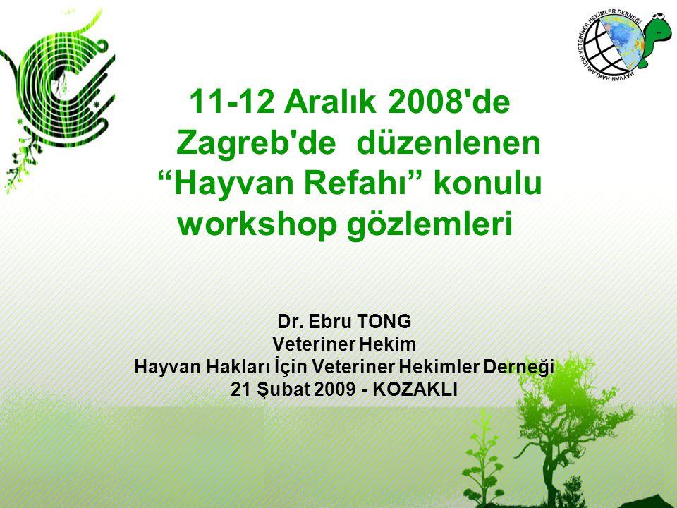 """11-12 Aralık 2008'de Zagreb'de düzenlenen """"Hayvan Refahı"""" konulu workshop gözlemleri Dr. Ebru TONG Veteriner Hekim Hayvan Hakları İçin Veteriner Hekim"""