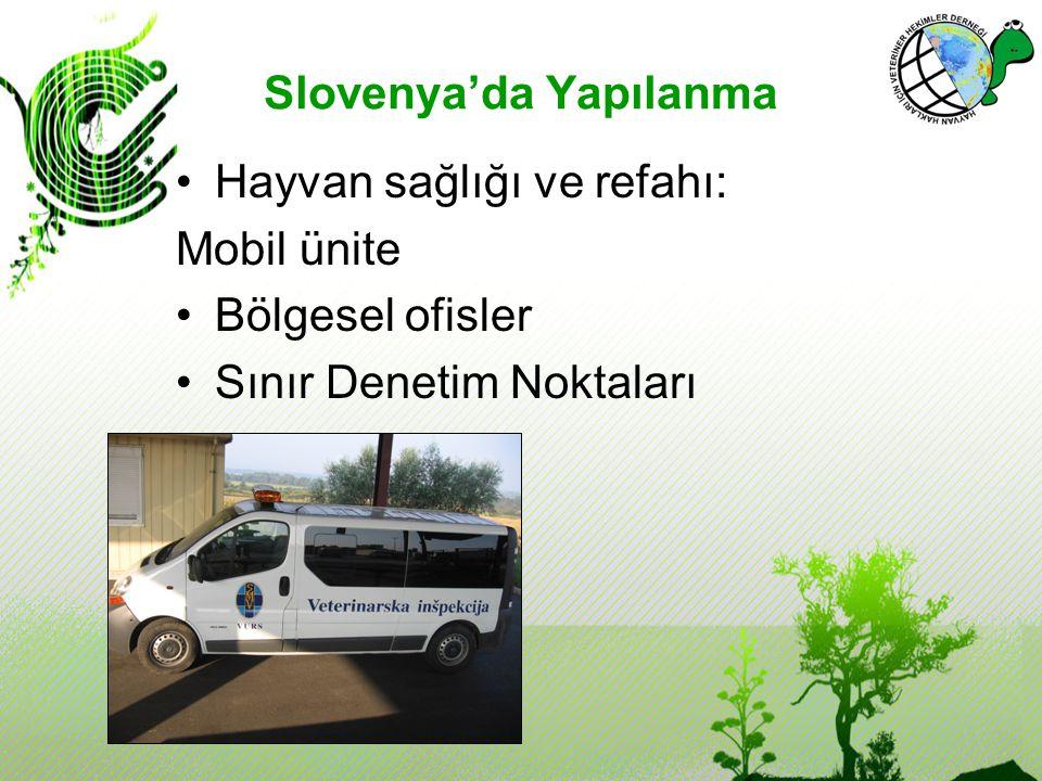 Slovenya'da Yapılanma Hayvan sağlığı ve refahı: Mobil ünite Bölgesel ofisler Sınır Denetim Noktaları