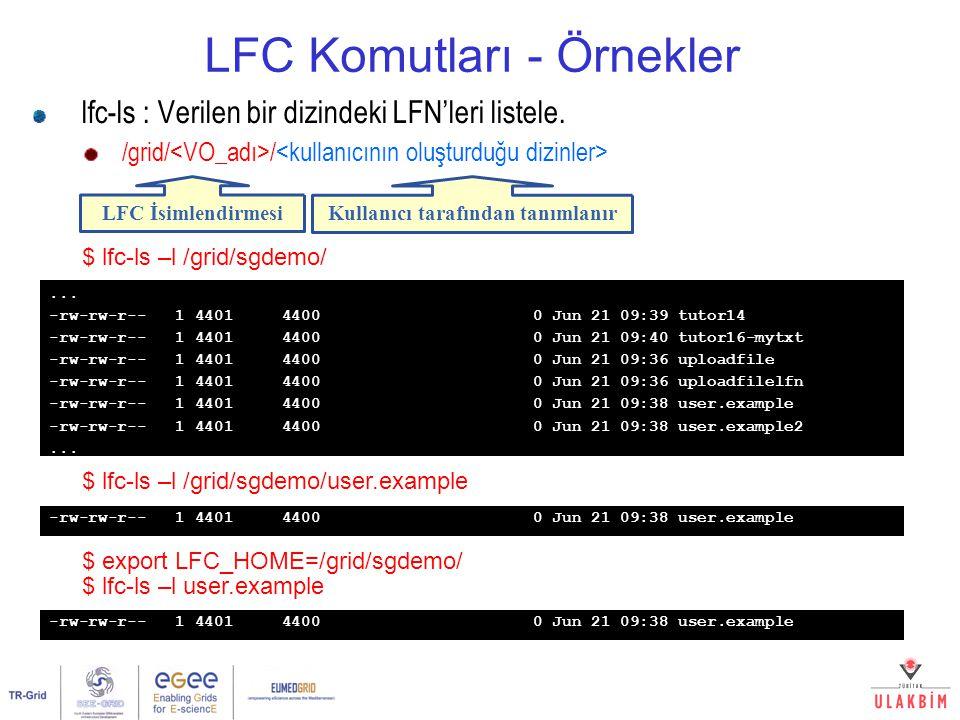 LFC Komutları - Örnekler lfc-ls : Verilen bir dizindeki LFN'leri listele. /grid/ / $ lfc-ls –l /grid/sgdemo/ LFC İsimlendirmesi Kullanıcı tarafından t
