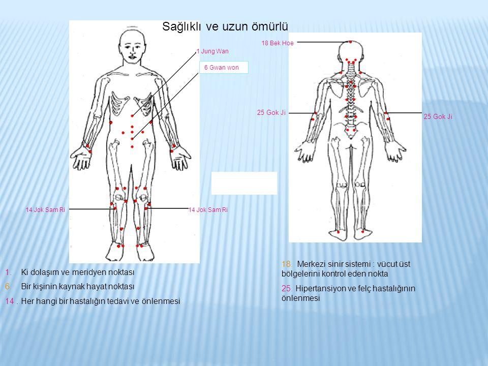 1 Jung Wan 6 Gwan won 14 Jok Sam Ri 18 Bek Hoe 25 Gok Ji Sağlıklı ve uzun ömürlü 1. Ki dolaşım ve meridyen noktası 6. Bir kişinin kaynak hayat noktası