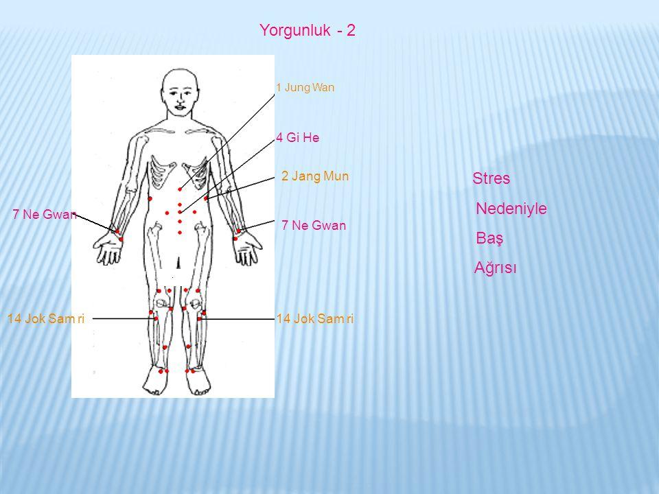 1 Jung Wan 2 Jang Mun 4 Gi He 7 Ne Gwan 14 Jok Sam ri 7 Ne Gwan Stres Nedeniyle Baş Ağrısı Yorgunluk - 2